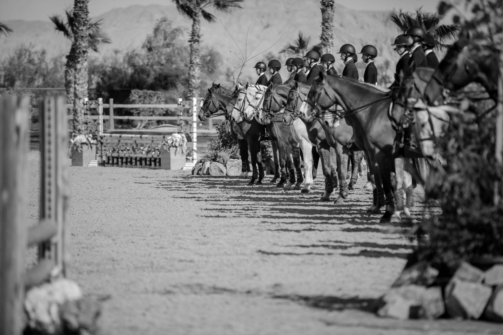 Aleron Training Stables Hunter Jumper Equitation